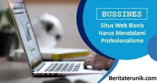 Situs Web Bisnis Harus Mendalami Profesionalisme